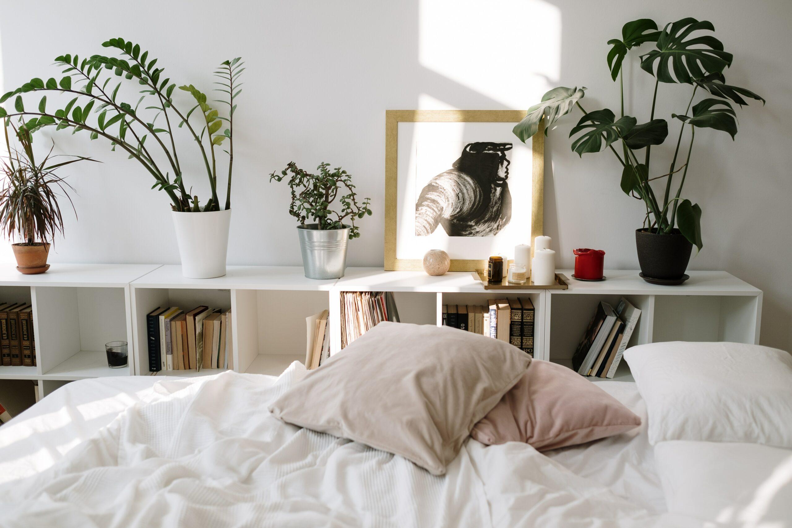 Planten op de slaapkamer: goed idee?